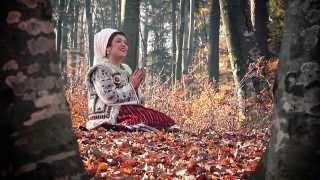Diana Sarbu - Strig la badea nu se uita