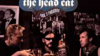 """Not Fade Away"" - The Head Cat -"
