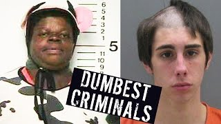 5 DUMBEST CRIMINALS EVER