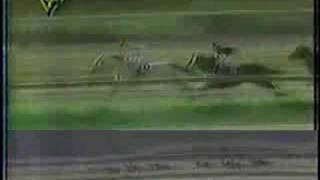 Clasico Jose Antonio Paez 1999