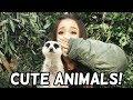 Ariana Grande With Animals