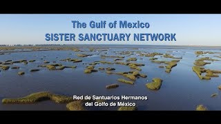 The Gulf of Mexico Sister Sanctuary Network
