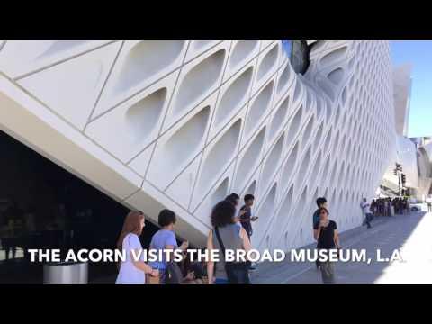 Acorn visits the Broad Museum