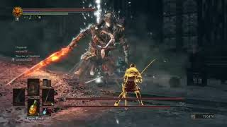 Another day, another flawless victory! My1337ninjaskill,  Dark Souls 3
