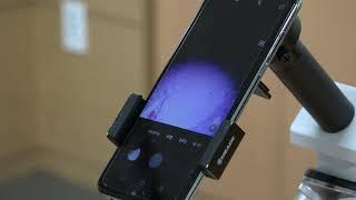 [메이커마당] 청도중 스마트폰을 활용한 현미경 만들기