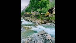 #Təbiət #Doğa #природа