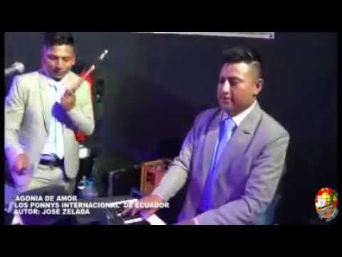 AGONIA DE AMOR  LOS PONNYS INTERNACIONAL  DE ECUADOR  JOSE ZELADA