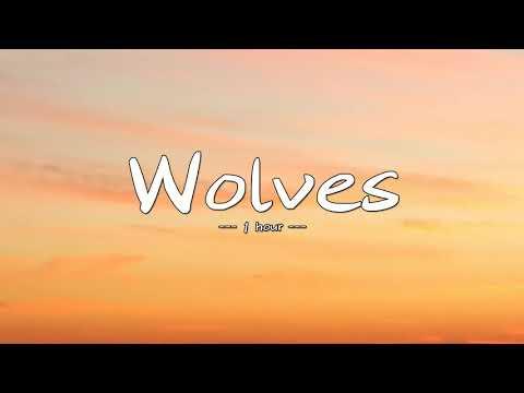 Selena Gomez, Marshmello - Wolves for 1 hour
