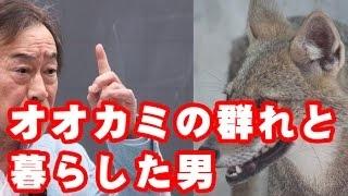 【武田鉄矢】今朝の三枚おろしで本を紹介。「狼の群れと暮らした男」シ...