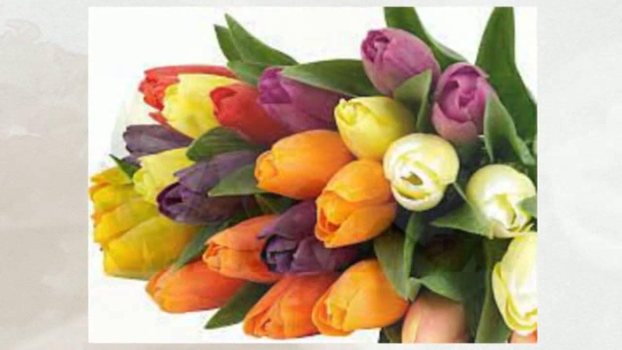 Металлосайдинг названия цветов