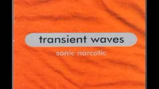 Transient Waves - Paradise [1999]