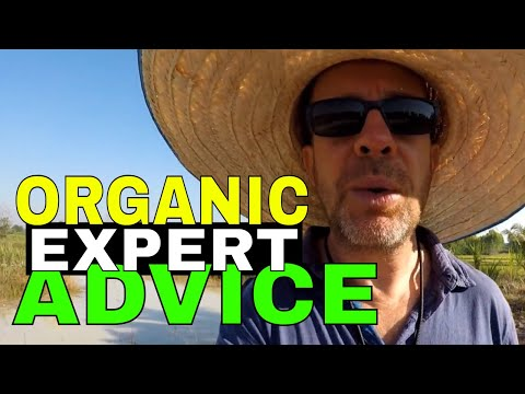 Growing Organic Expert Advice | Organic gardening tips