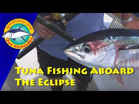 Eclipse Offshore Tuna Fishing & Cooking With Dan Hernandez | SPORT FISHING