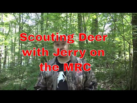 Deer Scouting with Jerry at the MRC