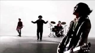 NICOTINE / BLACK FLYS-2010-