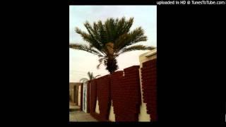 مجادعة ود مسيخ + ود الخاويه