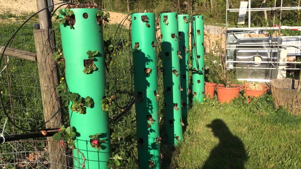 Aquaponics And Vertical Gardening..