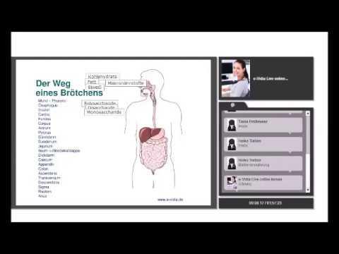 Anatomie Physiologie Magen-Darm1 - YouTube