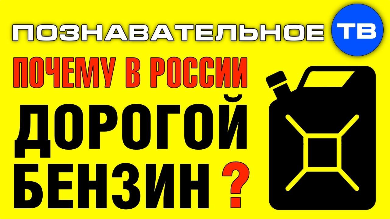 Картинки по запросу Почему в России дорогой бензин? (Познавательное ТВ, Артём Войтенков)