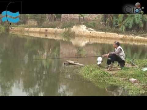 Vietnam-Traditional fishing(2)