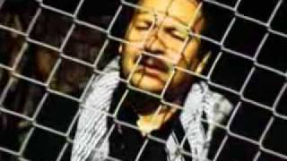 Jawad Ghaziyar - Ya Maula Ali - Orokzai Studios - New Song