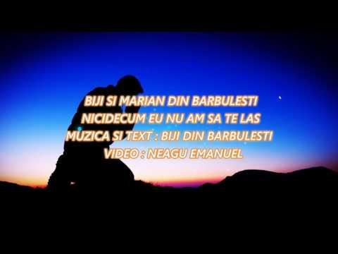Frati de la Barbulesti - Nicidecum nu am sa te las (2017)