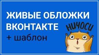 Как сделать живую обложку ВКонтакте  + ШАБЛОН