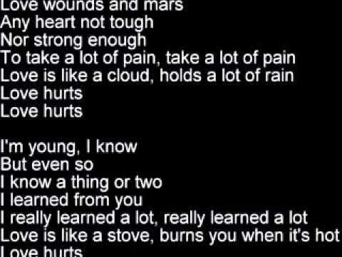 Love Hurts   Roy Orbison lyrics