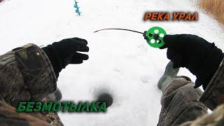 Ловля окуня на реке Урал Рыбалка в Оренбурге