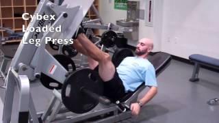 Plate Loaded Leg Press