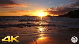Beautiful ILLETAS Beach Chillout Lounge 4K Sunset Mallorca
