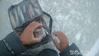 Сбор улова! Рыбалка в Якутии Yakutia