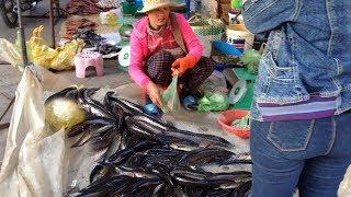 Fish market In Cambodia