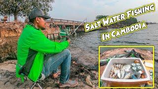 ស្ទូចត្រីសមុទ្រស៊ីដូចត្រីឆ្លាំង | Salt Water Fishing In Cambodia | Cambodia Fishing #01