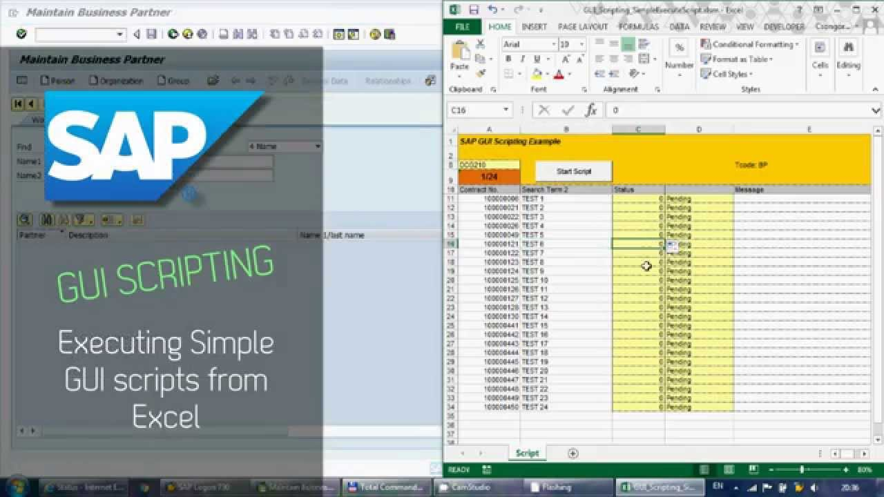 SAP GUI Scripting 1 - Running scripts from Excel