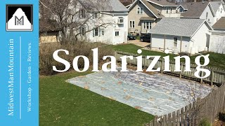 How to Solarize Your Garden for Weed Prevention