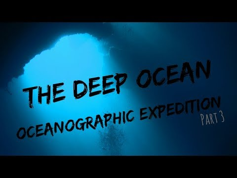 The DEEP OCEAN- A day in the life of a marine biology PhD| EXPEDITION edition #3