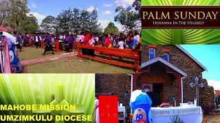 Diocese of Umzimkulu - Palm Sunday