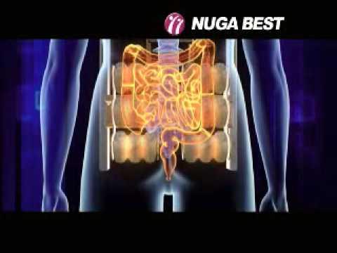 Nuga Best Thermal Massage Bed - Nuga Medical Company, Korea