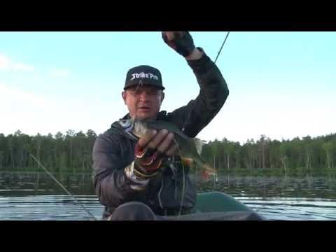 ловля окуня на крейзи фиш видео