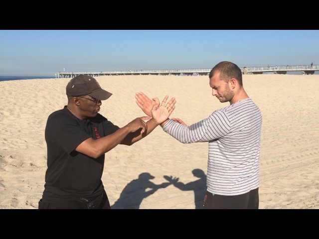 Wing Chun Cheun Sau (Threading Hand)