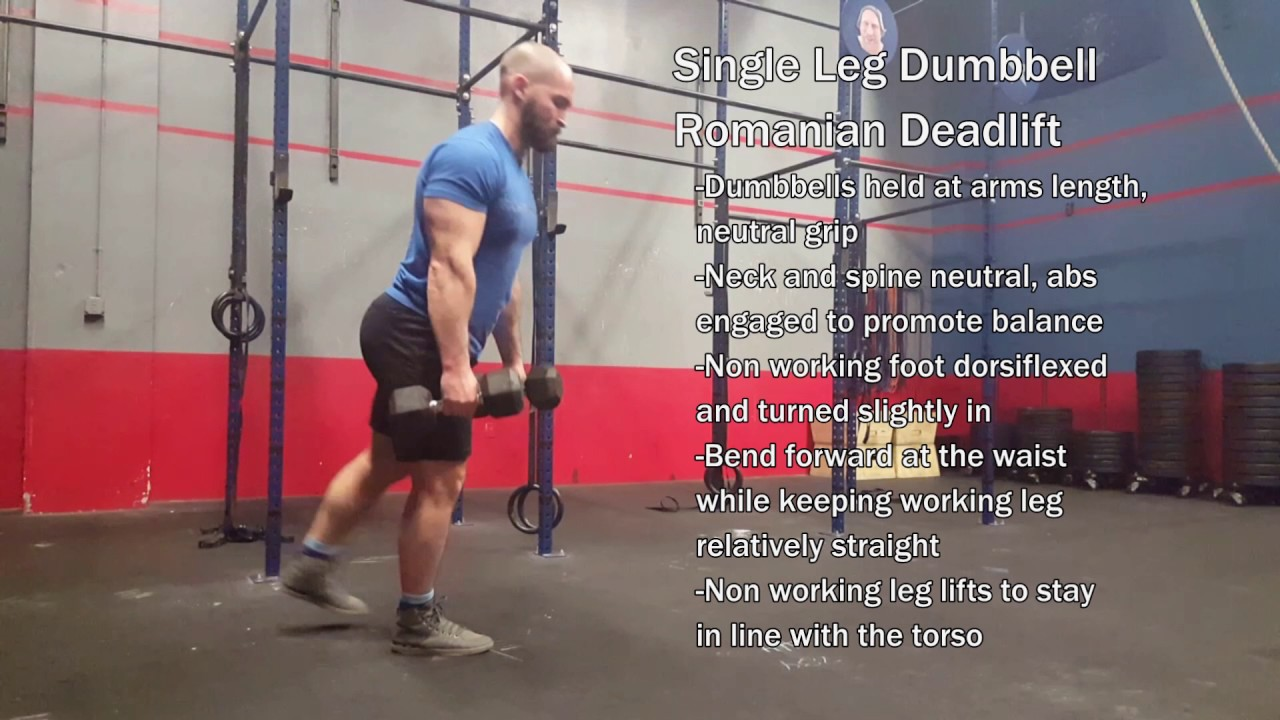 Single leg dumbbell romanian deadlift youtube single leg dumbbell romanian deadlift falaconquin