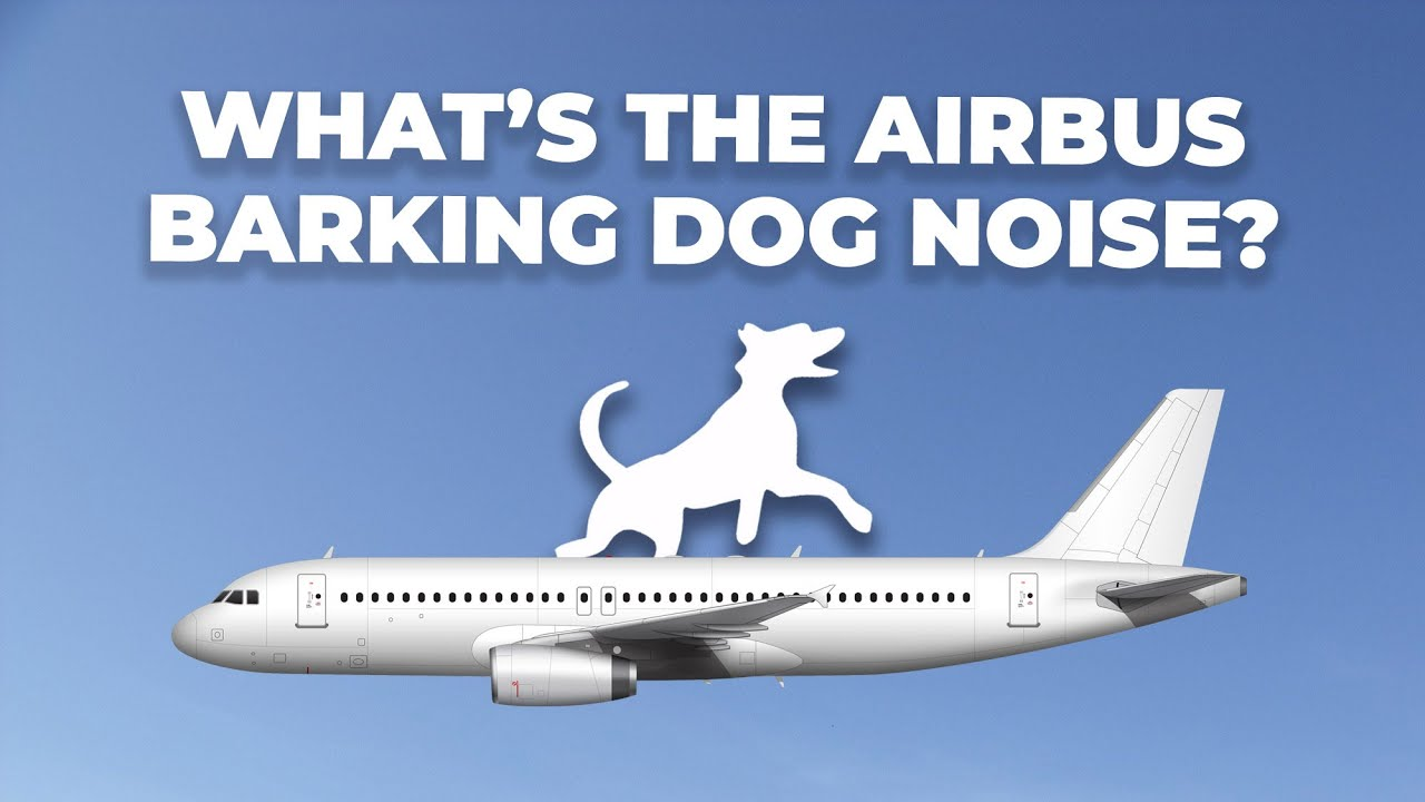 What Is The Strange Barking Noise Some Airbus Aircraft Make?