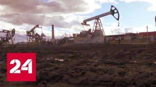 Китай заинтересовался слабеющей сланцевой отраслью США - Россия 24