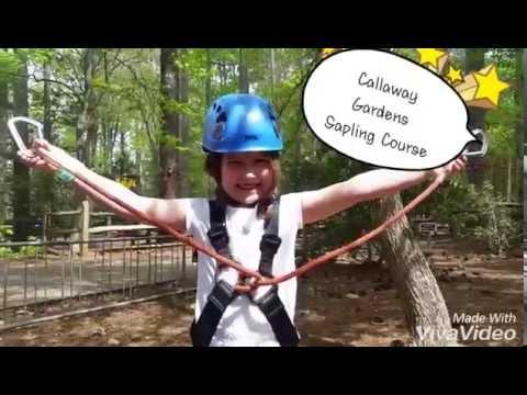 Callaway Garden Treetop Sapling Course