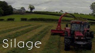 Northern Ireland Aerial Silage - Massey Ferguson