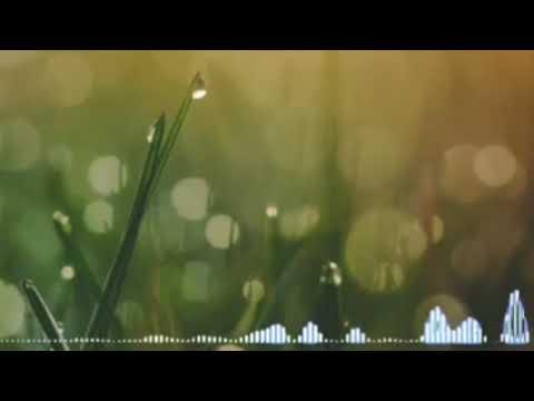 Reggae Killa Ha Dil Ard Musik Indonesia