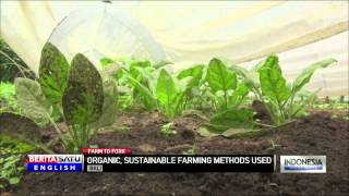 Bali Restaurant Supports Local Organic Growers for Farm to Fork Concept