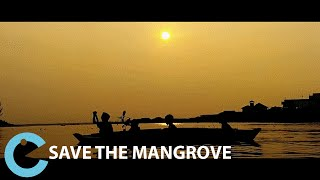 Save the Mangrove - Act On Climate Change - Short Film