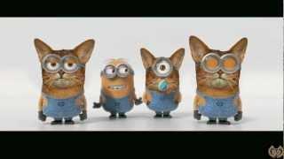 CancióN BaNaNa! (los GATITOS - Musica Para NiÑoS)☺